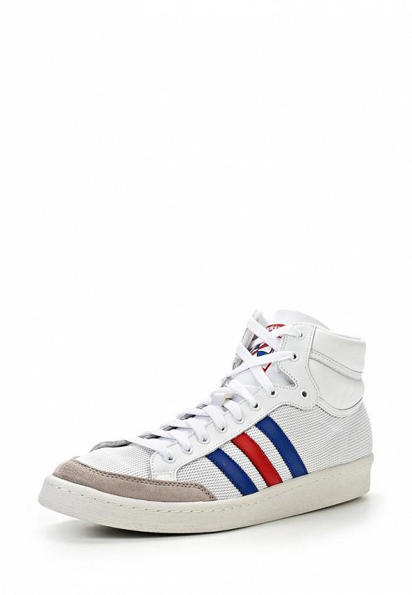 Мужские кеды Adidas Originals (Адидас Ориджиналс) Q20355: изображение 2