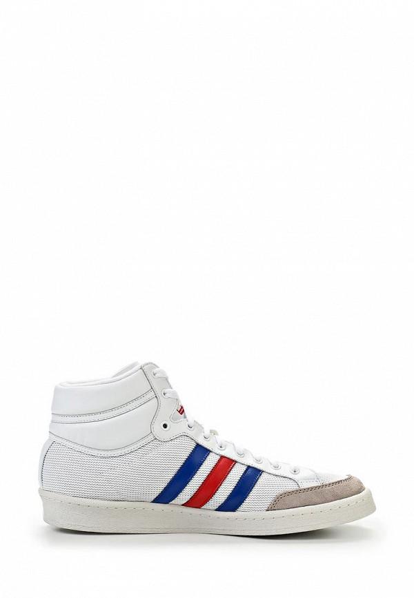 Мужские кеды Adidas Originals (Адидас Ориджиналс) Q20355: изображение 10