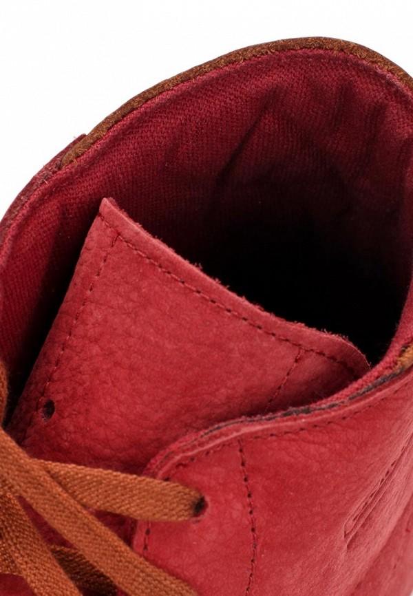 Мужские кеды Adidas Originals (Адидас Ориджиналс) D65258: изображение 14