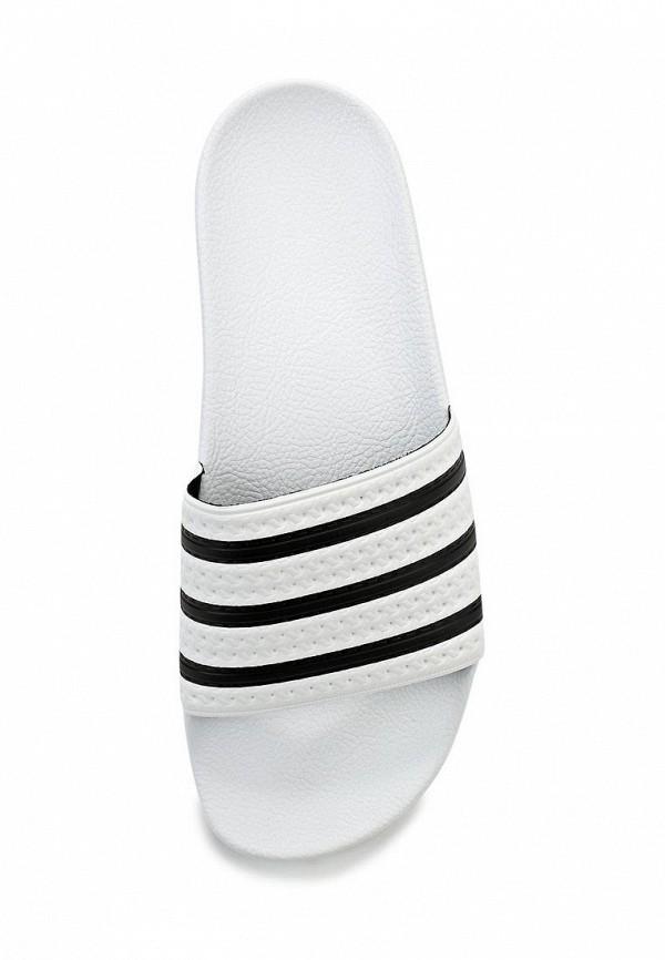 Мужские сланцы Adidas Originals (Адидас Ориджиналс) 280648: изображение 3