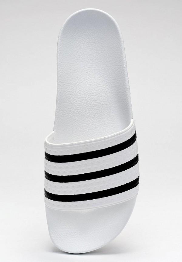 Мужские сланцы Adidas Originals (Адидас Ориджиналс) 280648: изображение 6