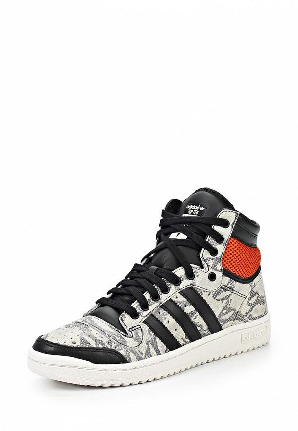 Мужские кеды Adidas Originals (Адидас Ориджиналс) M25601: изображение 2