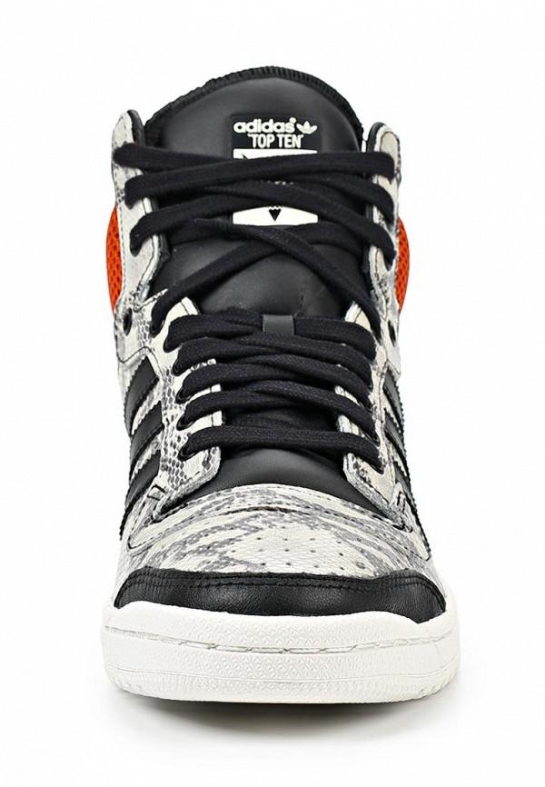 Мужские кеды Adidas Originals (Адидас Ориджиналс) M25601: изображение 6