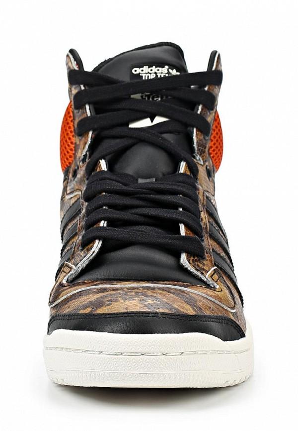 Мужские кеды Adidas Originals (Адидас Ориджиналс) M25602: изображение 7