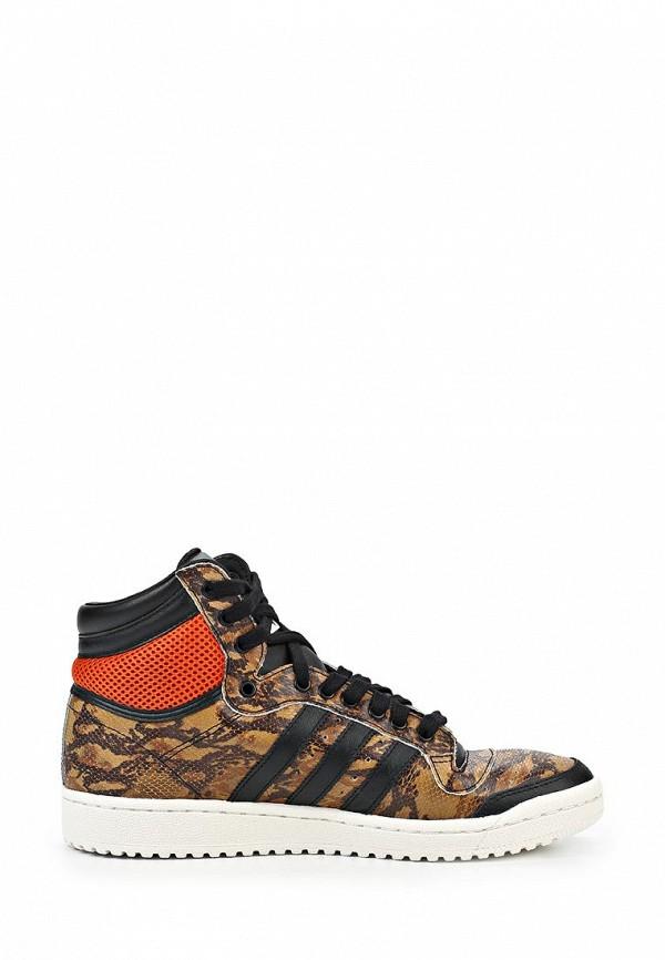 Мужские кеды Adidas Originals (Адидас Ориджиналс) M25602: изображение 9