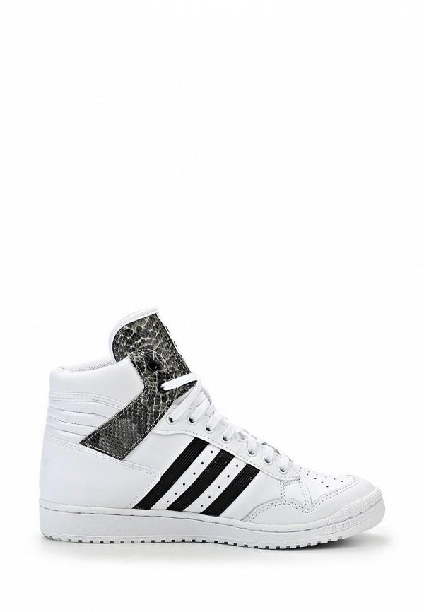 Женские кроссовки Adidas Originals (Адидас Ориджиналс) M20881: изображение 8