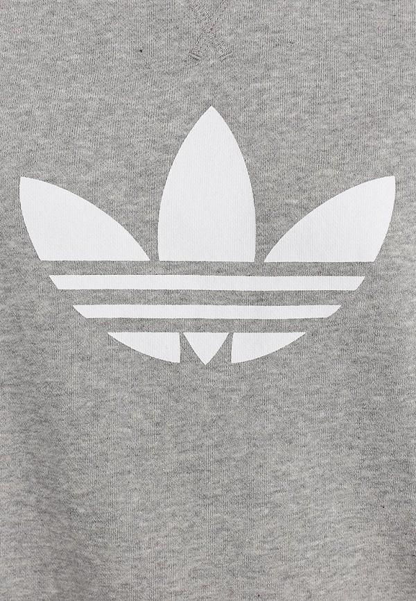 Толстовка Adidas Originals (Адидас Ориджиналс) G86513: изображение 3