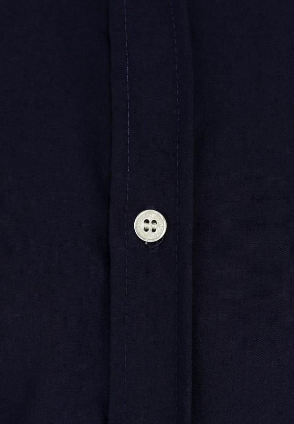 Рубашка Alcott CF376UO  C220 BLU: изображение 2