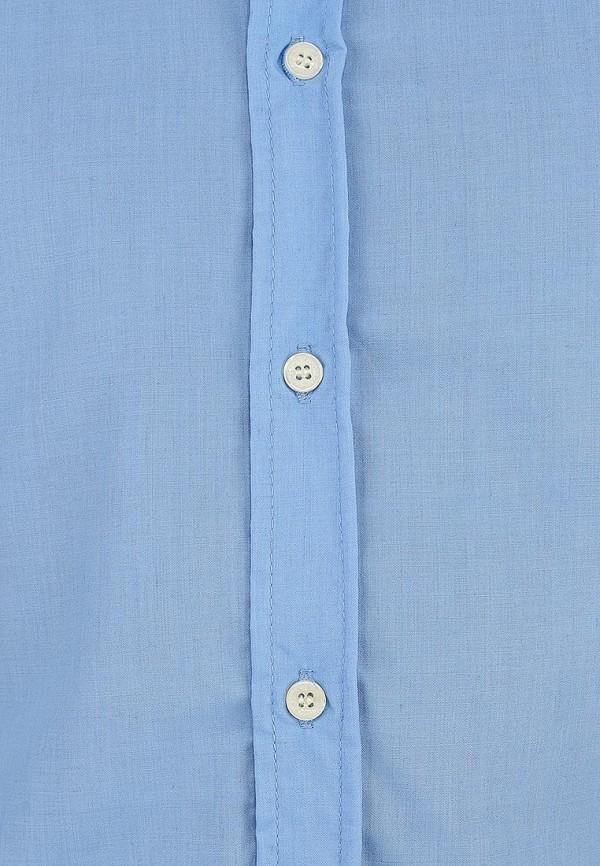 Рубашка Alcott CF376UO  C281 AZZURRE: изображение 2