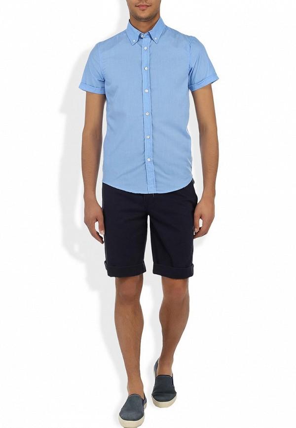Рубашка Alcott CF376UO  C281 AZZURRE: изображение 3