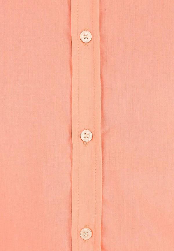 Рубашка с коротким рукавом Alcott CF376UO  C381 CORAL: изображение 4