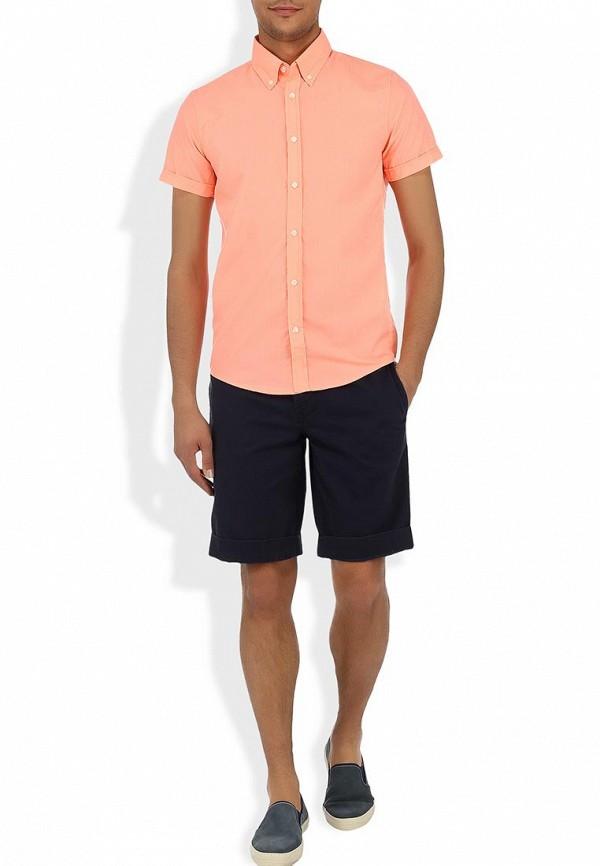 Рубашка с коротким рукавом Alcott CF376UO  C381 CORAL: изображение 6