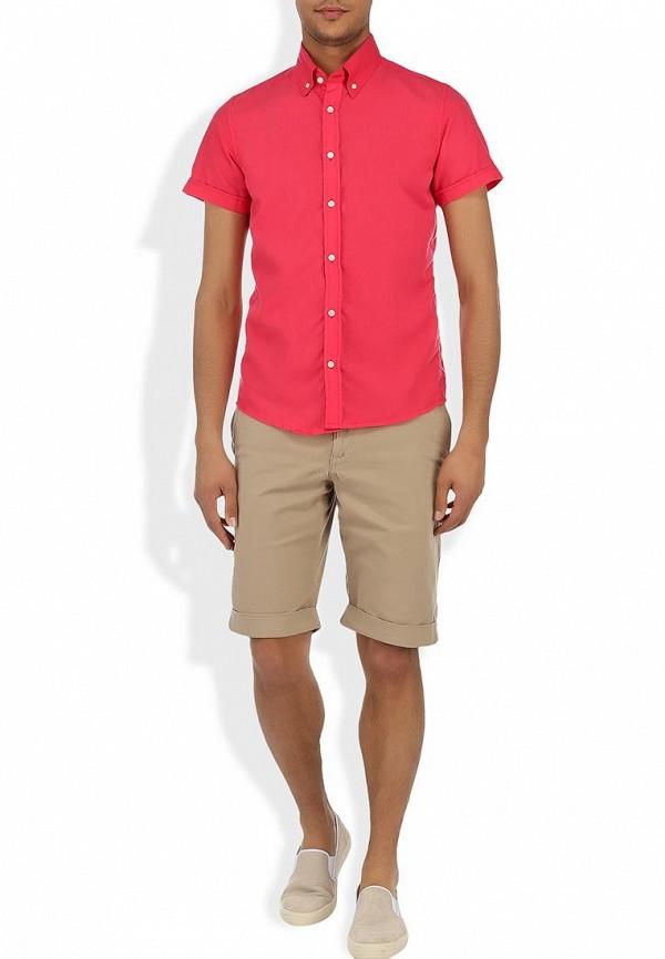 Рубашка Alcott CF376UO  C453 FUXIA: изображение 3