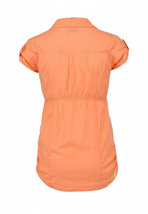 Блуза Alcott CF716DO C381 CORAL: изображение 2