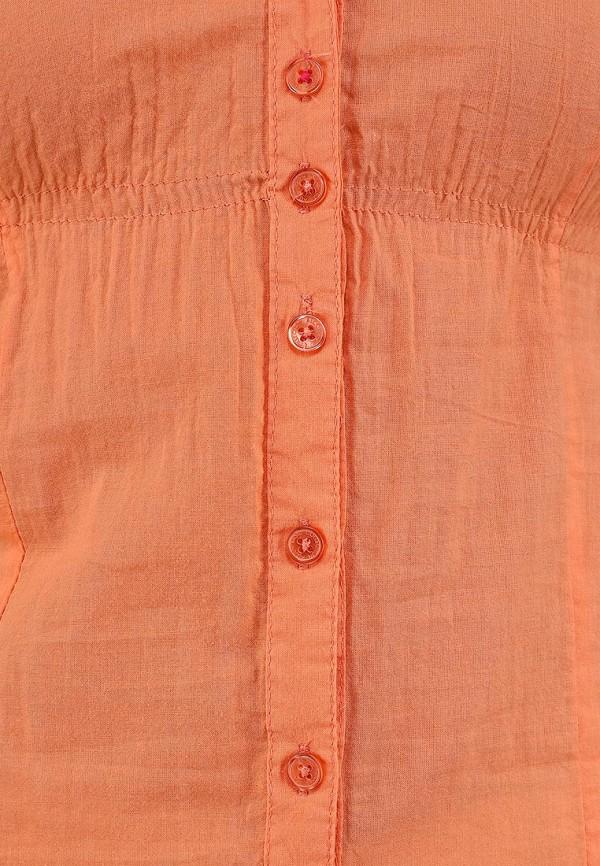 Блуза Alcott CF716DO C381 CORAL: изображение 3