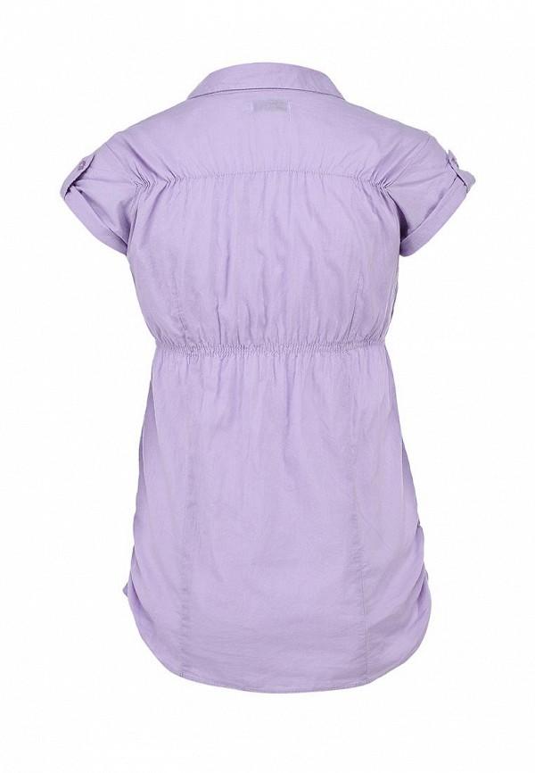 Блуза Alcott CF716DO C475 LILLAC: изображение 3