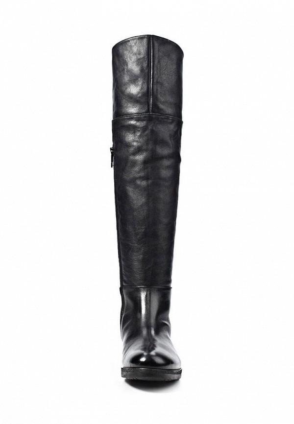 фото Женские сапоги-ботфорты Alberto Fermani AL856AWKV226, черные