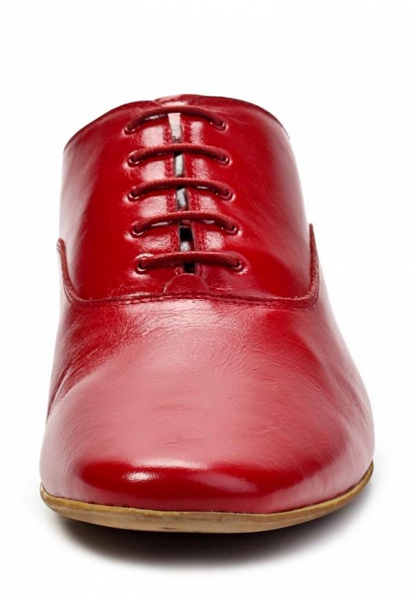 Мужские туфли Antonio Biaggi 38582: изображение 4