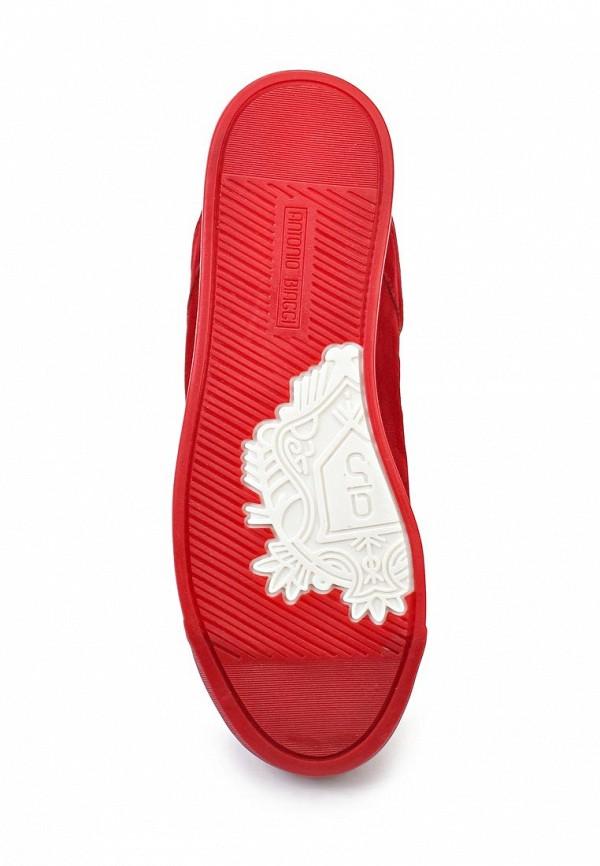 Женские ботинки Antonio Biaggi 43296: изображение 3