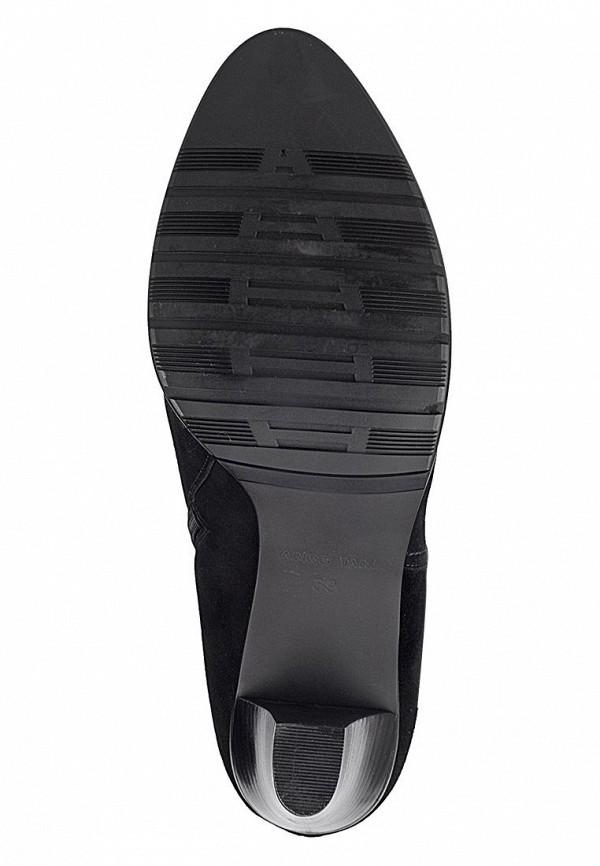 Сапоги на каблуке Anre Tani NT03-18-5F: изображение 3