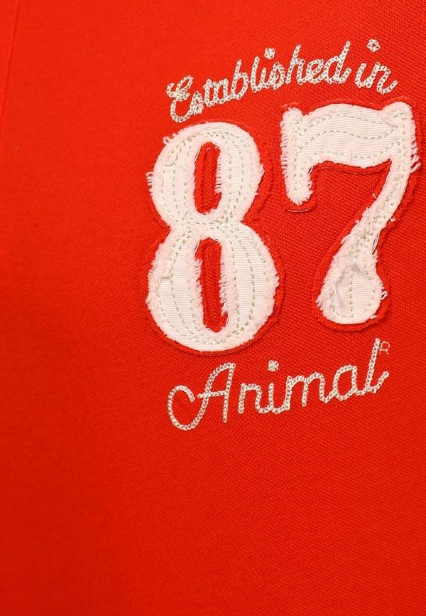 Мужские поло Animal CL4SE093: изображение 4