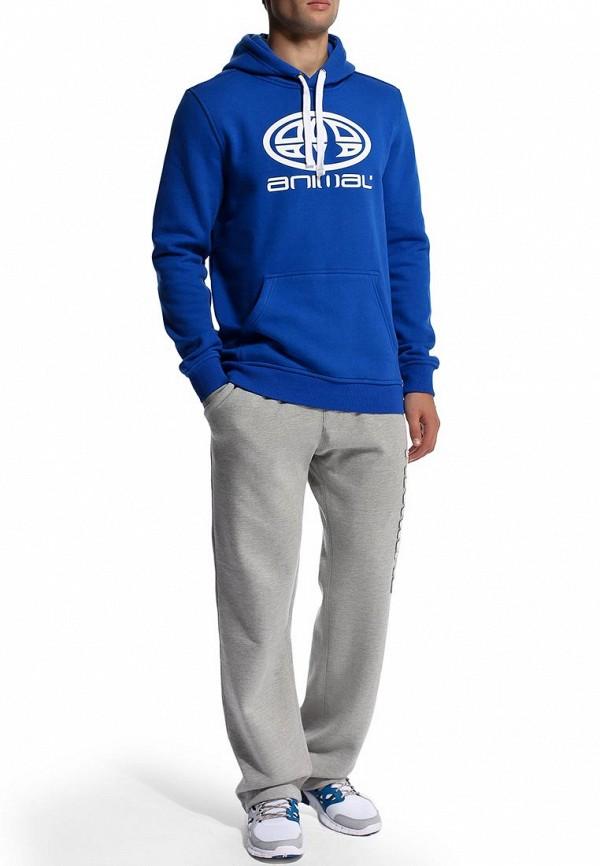 Мужские спортивные брюки Animal CL4SE174: изображение 6