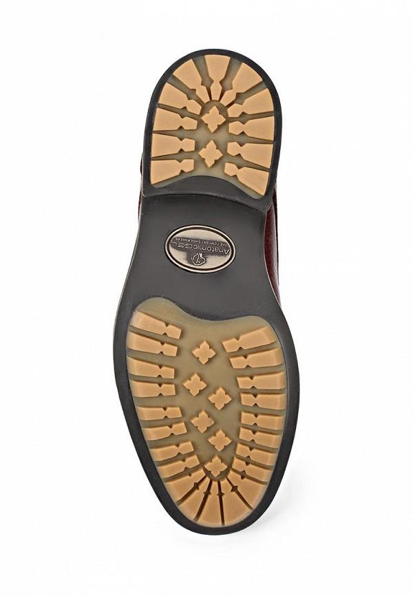 Мужские ботинки Anatomic & Co 909071: изображение 4