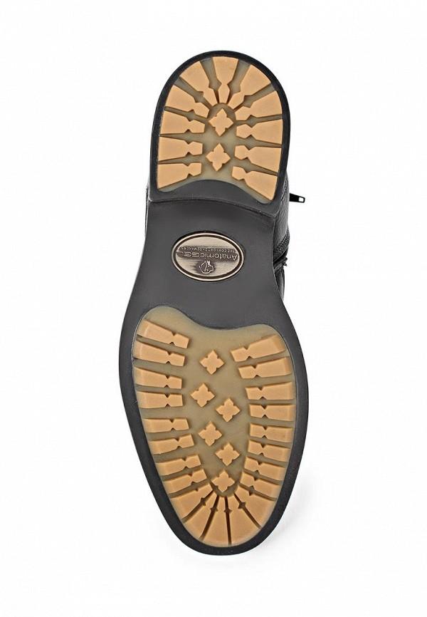 Мужские ботинки Anatomic & Co 909069: изображение 4