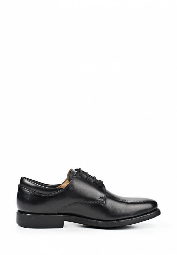 Мужские туфли Anatomic & Co 818101: изображение 10