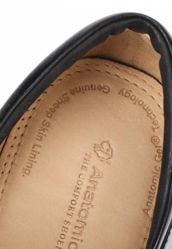 Мужские туфли Anatomic & Co 818101: изображение 12