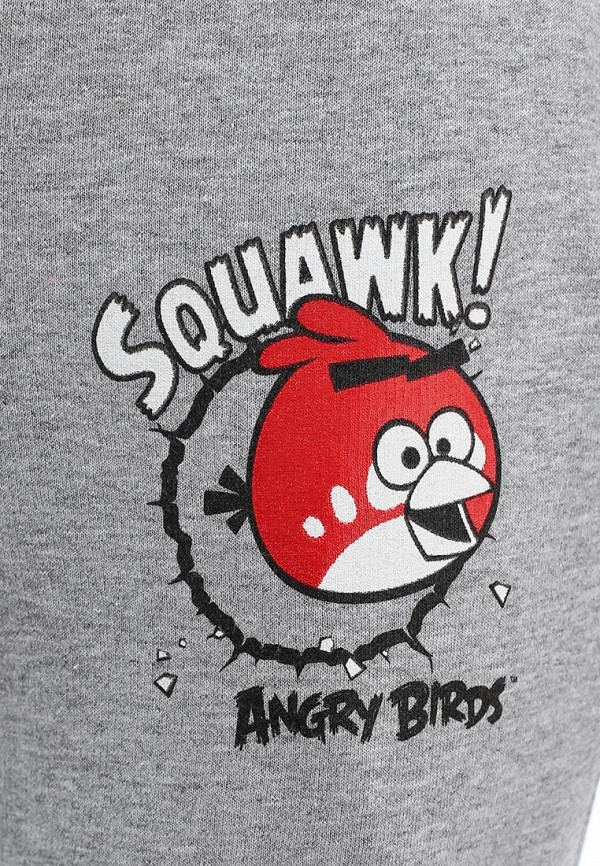 Спортивные брюки ANGRY BIRDS (Энгри Бёрдс) AB-BPP199-ML: изображение 2