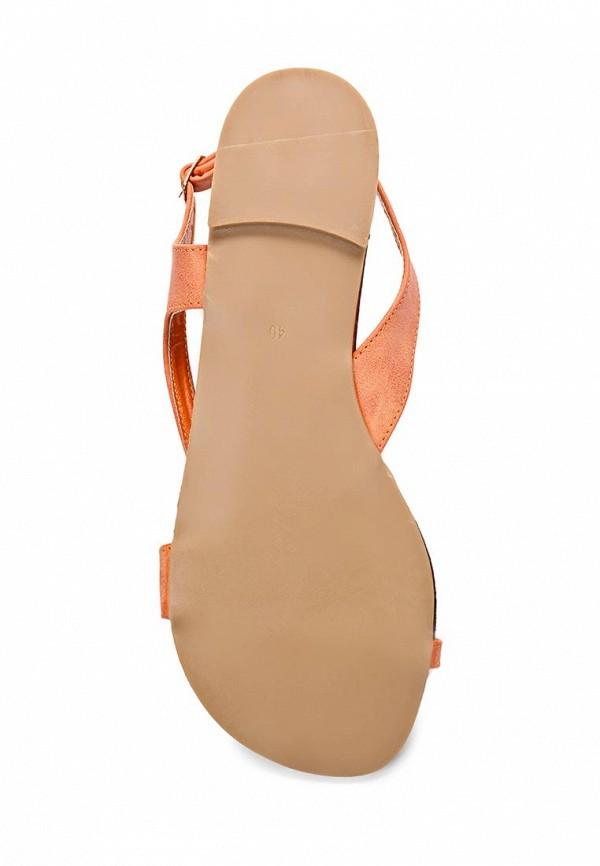 Женские сандалии ARZOmania H 57-17: изображение 3