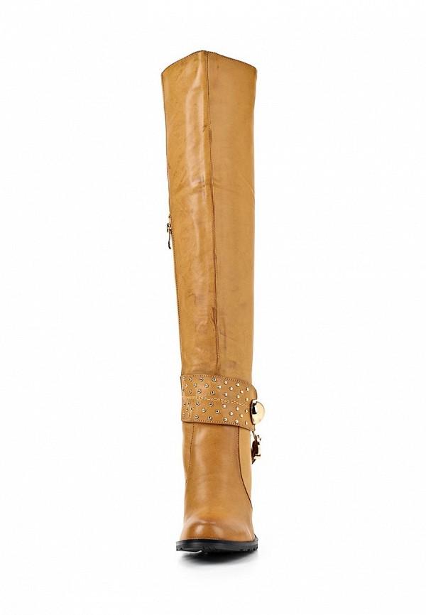 Женские сапоги ARZOmania AS 910-3: изображение 3