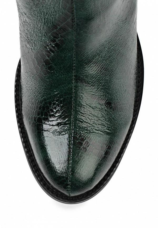 Женские сапоги ARZOmania AS 100-7: изображение 5
