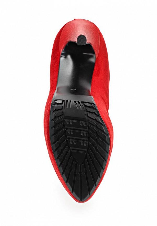 Сапоги на каблуке ARZOmania T 330-4(ZT 1103-601): изображение 8