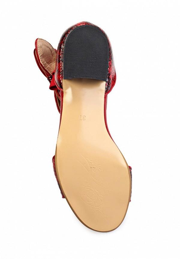Женские сандалии ARZOmania CV 400-4: изображение 3