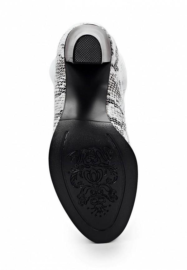 Сапоги на каблуке ARZOmania AI 86-2: изображение 3