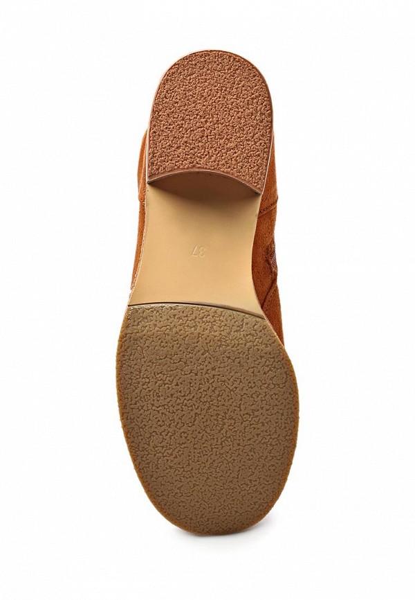 Сапоги на каблуке ARZOmania AS 885-5: изображение 3