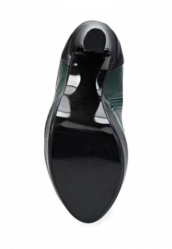 Сапоги на каблуке ARZOmania AS 913-7: изображение 3