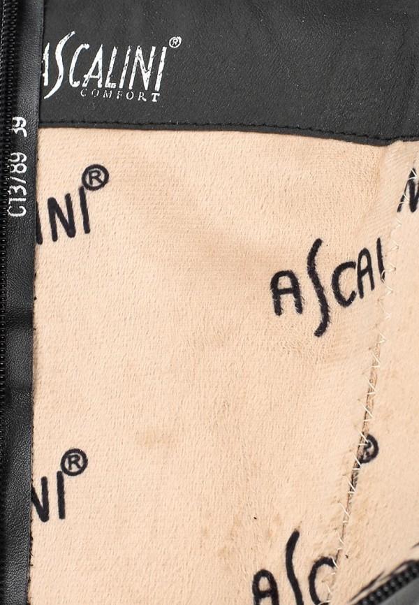 Женские сапоги Ascalini C13789: изображение 6