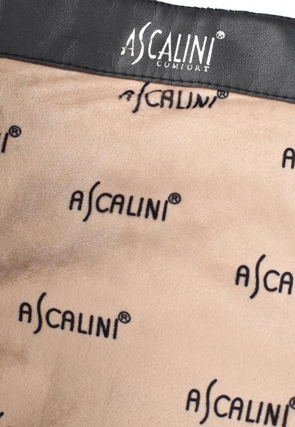 Женские сапоги Ascalini CE14348: изображение 6