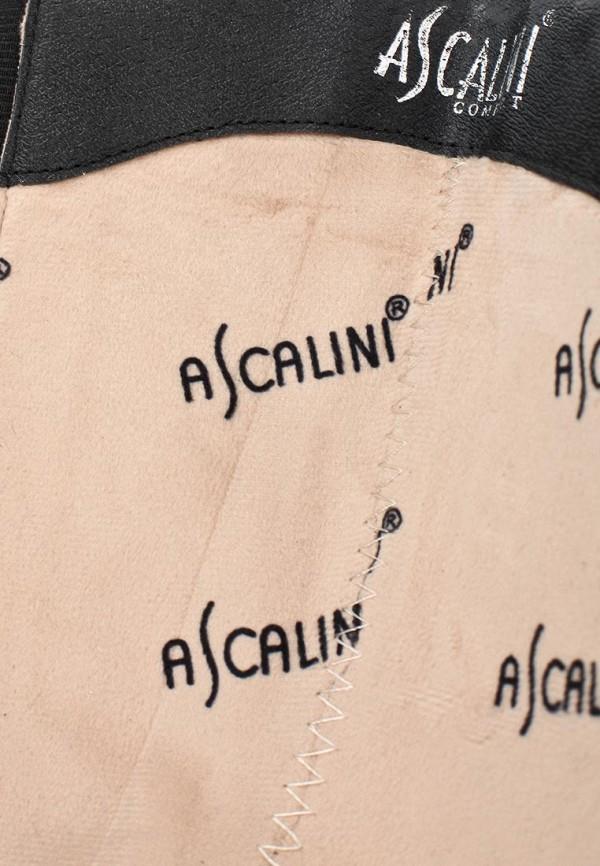 Женские сапоги Ascalini C14367: изображение 6