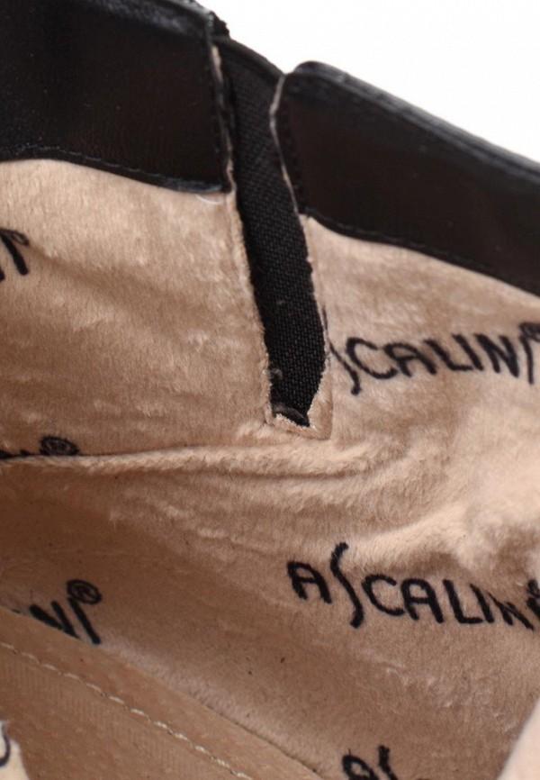 Ботильоны на каблуке Ascalini D14806: изображение 12
