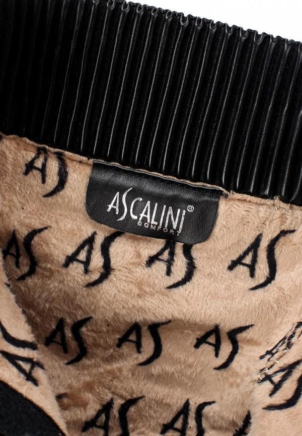 Женские сапоги Ascalini D106-B106K: изображение 6