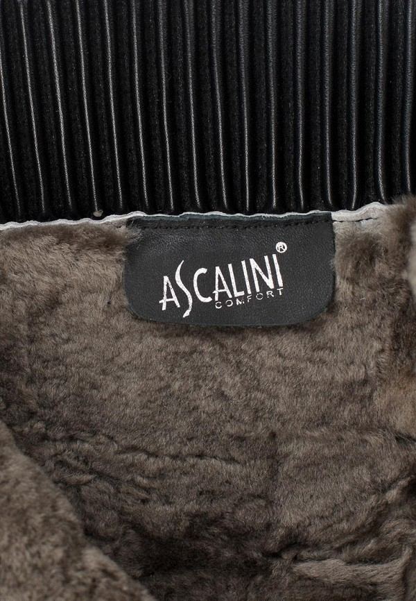 Женские сапоги Ascalini DZ106-B106K: изображение 12