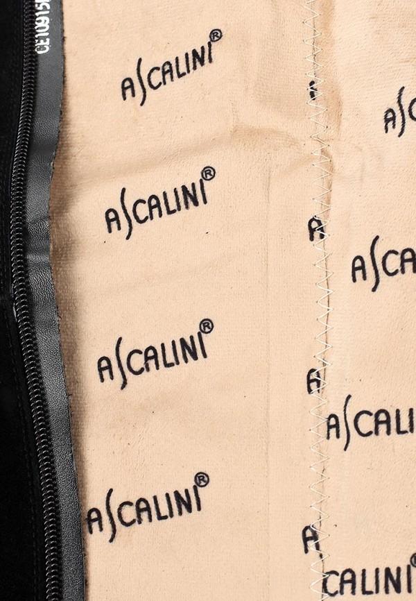 Ботфорты Ascalini CE10915BF: изображение 12