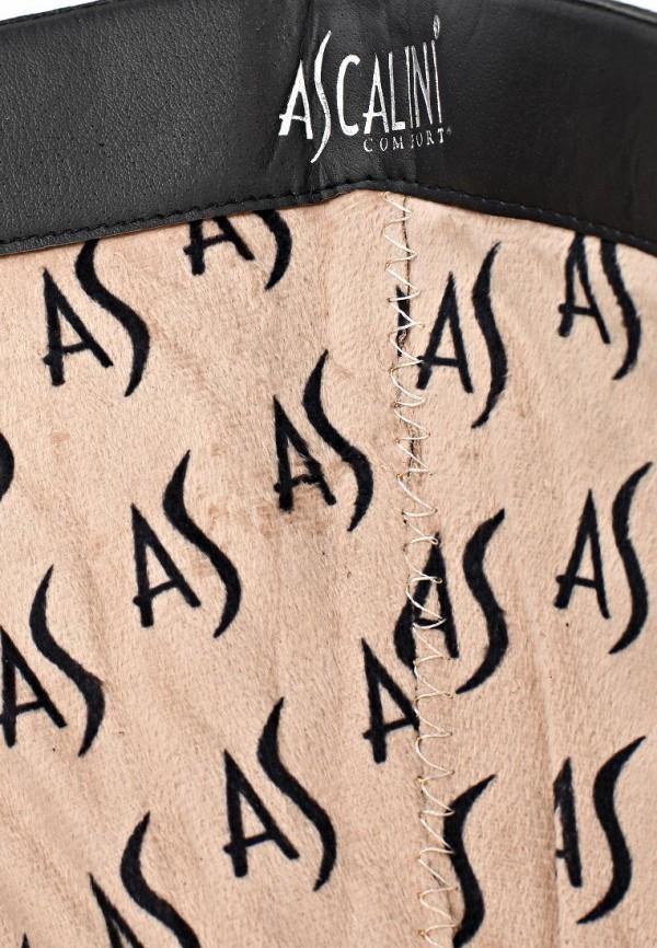 Женские сапоги Ascalini C11518BK: изображение 6