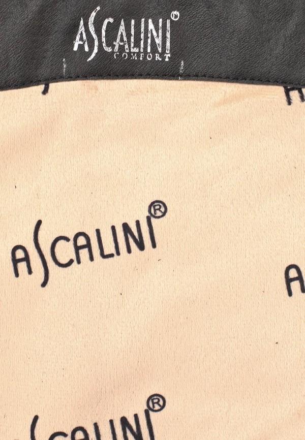 Женские сапоги Ascalini C13914: изображение 12