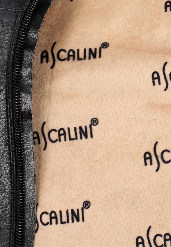 Ботфорты Ascalini C14014: изображение 13
