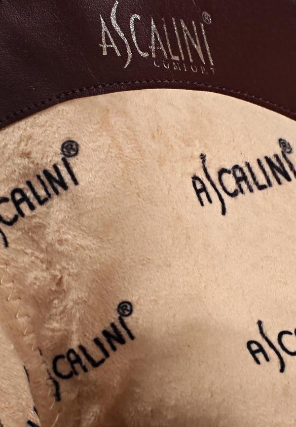 Полусапоги Ascalini D14270: изображение 13
